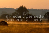 Sunrise on Biebrza national park Poland 2